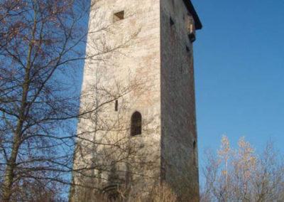goring-castle-steves-ww2-german-tours-02